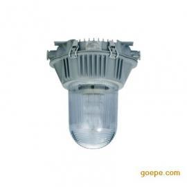 SW7160直流应急灯