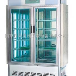 智能人工气候箱RXZ-3000B