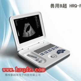 全数字笔记本宠物b超彩超测孕仪hrq-f30