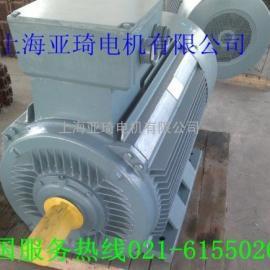 Y2-355M2-6电动机|三相异步电动机