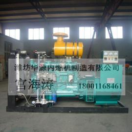 200kw柴油,沼气双燃料发电机组 全自动化