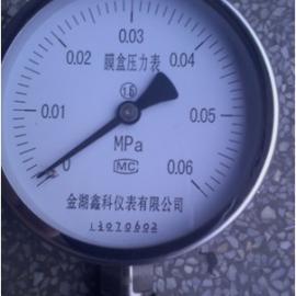 YE-100不锈钢膜盒压力表