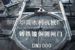 PGZ水库铸铁闸门