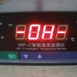 数显测温仪WP-C温度监测仪-温控仪WP-C特价
