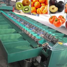猕猴桃分选机,果蔬分选设备,小型水果分选系统