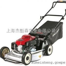 草坪车 草坪机 手推式/自走式草坪车