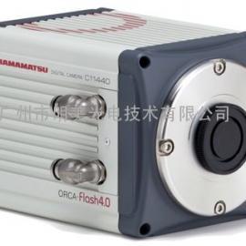 银川sCMOS高灵敏度相机 ORCA-Flash4.0