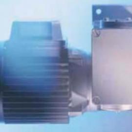 代理德国RGM电机