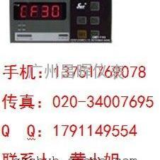 SWP-F403-01-12-HL-P温度数显表