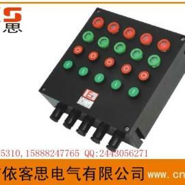 BXK8050-A10(10钮防爆控制箱) 工程塑料材质