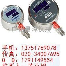 MAM484A/ZL型数字化压力变送控制器