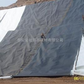 矿业渣场HDPE土工膜