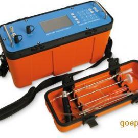 室内环境汞分析仪3000 IP