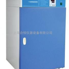 电热恒温培养箱,微生物生长箱