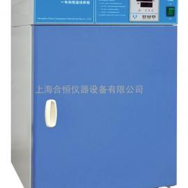 微生物培养箱,电热恒温培养箱