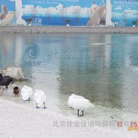 人工湖水处理