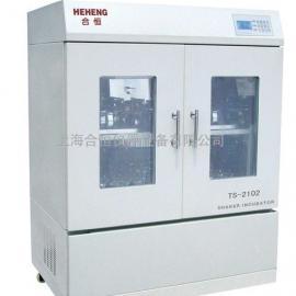 双层恒温摇床 恒温培养振荡器TS-2102