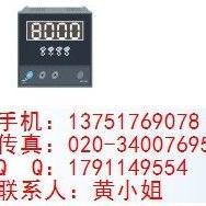 WP-LE3Q-C900NW三相交流无功功率表