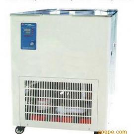 DLSB-20L/-80℃低温冷却液循环泵