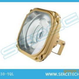 SBD1130-YQL200Z、免维护节能防爆灯