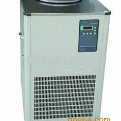DLSB-1000L/-80℃ 低温冷却液循环泵