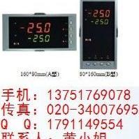 NHR-5500A-27/27-0/0/2/X/X-A虹润