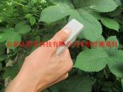叶片温度测量仪/叶温差测量仪/植物叶片温度测量仪