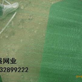 内蒙古绿色遮阳网