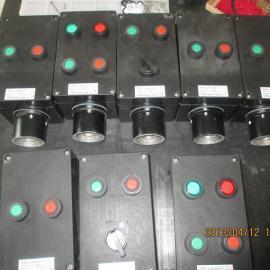 防水防尘防腐操作箱 三钮二灯一开关 挂式 工程塑料
