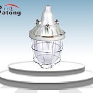 L400W隔爆型防爆灯 壁式30度安装或吸顶式安装