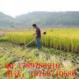 小型收割机 小麦收割机 收割机价格z6