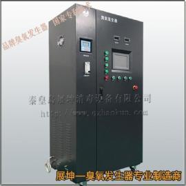 上海工业臭氧发生器|中水回用臭氧发生器