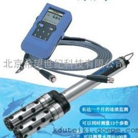 堀场多参数水质监测仪/离子连续监测仪W-20XD系列