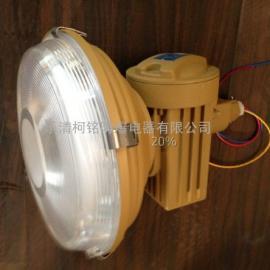 SBD1103-YQL50免维护防爆灯厂家