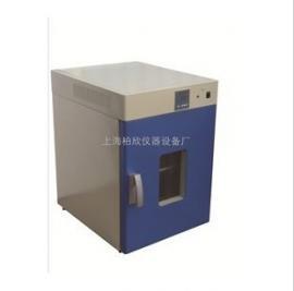 DHG-9030A立式250度鼓风干燥箱 烘箱 老化箱