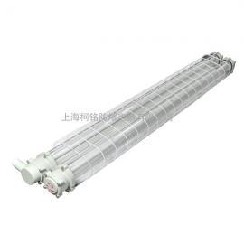 BAY51(T5)双管防爆节能荧光灯