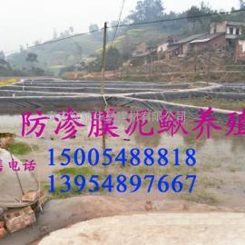 南阳泥鳅养殖池防逃防渗材料