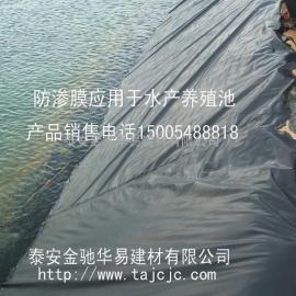 江西泥鳅养殖膜,防渗土工膜