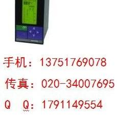 SWP-LCD-R801-00-23-N小型化无纸记录仪