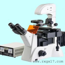 XDY-2倒置荧光显微镜