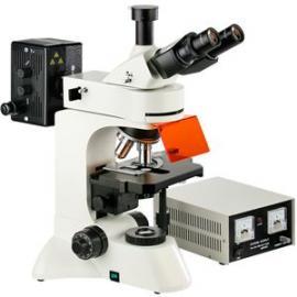 L3201荧光显微镜