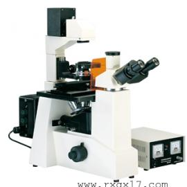 XDY-1倒置荧光显微镜