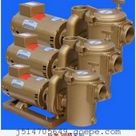 Premier比美铜泵 铜泵 过滤水泵