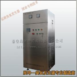 食品厂车间净化消毒臭氧发生器,食品车间臭氧消毒机