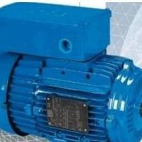 SEFCO低温泵CL-20