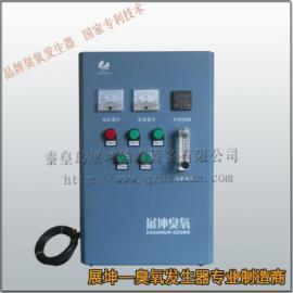 农村饮用水安全臭氧发生器