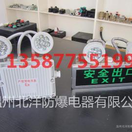 LED防爆应急灯CBJ52|节能双头防爆应急灯价格