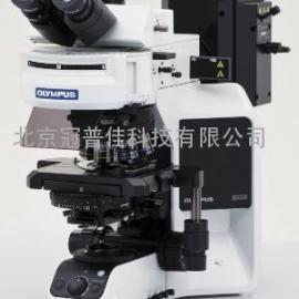 北京BX53荧光显微镜--北京