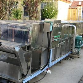 供应辣椒清洗漂烫焙煎流水线天翔机械质量优 效率高