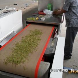 广州金银花微波干燥设备